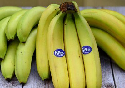 Banana Fyffes