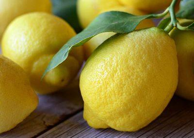 Limone foglia
