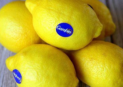 Limone Spagna