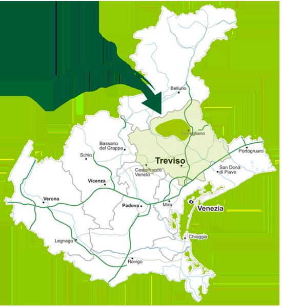 piantina Veneto consegna a domicilio Fruttera