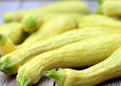Zucchina gialla